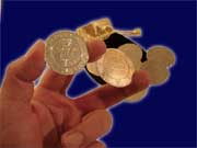 Magic Wishing Coins - Zaubertaler